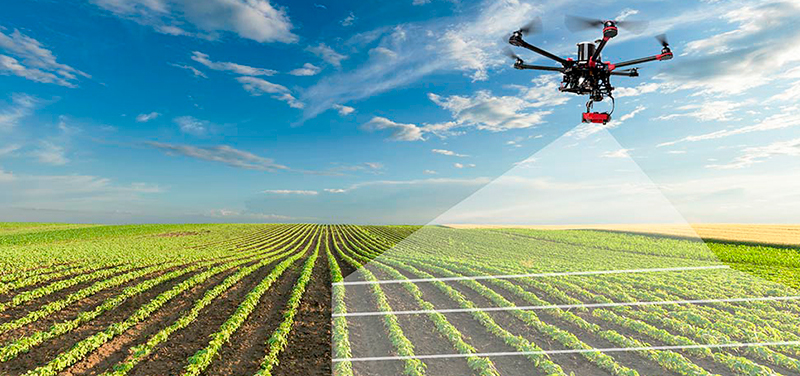 Computer vision in agriculture, agtech
