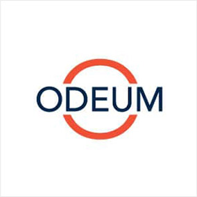 https://program-ace.com/wp-content/uploads/odeum-learning.jpg
